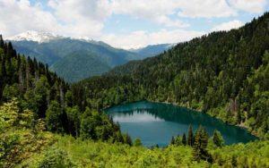Экскурсия в Абхазию озеро Рица